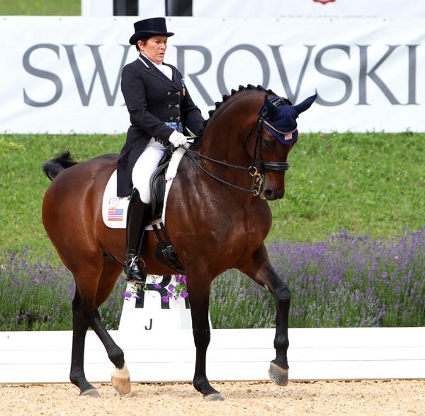 Shelly Francis and Doktor competing in the Schindlhof CDI4* grand Prix. © 2014 Ken Braddick/dressage-news.com