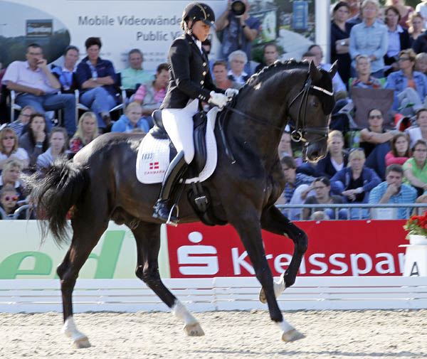 Sezuan ridden by Dorothee Schneider in the World Young Horse Championship five-year-old division. © 2014 Ken Braddick/dressage-news.com
