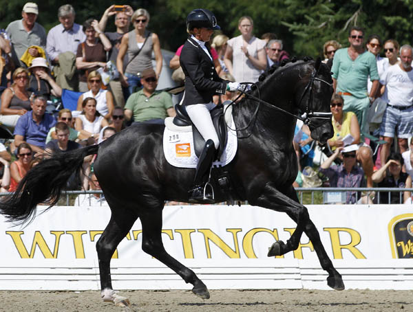 Emmelie Scholtens on Desperado were third, toundng out a Dutch sweep of the top three places in the World Young Horse Championship six-year-old qualifier. © 2014 Ken Braddick/dressage-news.com.