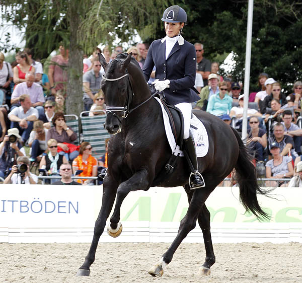 Dream Boy ridden by Gerdine Maree at the World Young Horse Championshps. © 2014 Ken Braddick/dressage-news.com