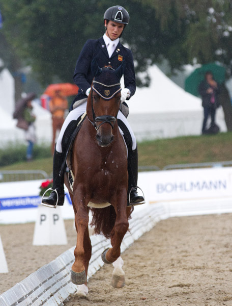 Juan Matute on Jamaicano de Ymas III in the World Young Horse Championships. © 2014 Ken Braddick/dressage-news.com