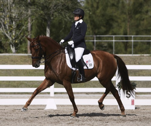 "Gisele and Ilse, now named ""Off To Paris"", silver and bronze medals with Lauren Barwick for Canada in Para Dressage"