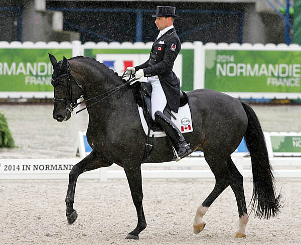 David Marcus on Chrevi's Capital in World Equestrian Games Grand Prix. © 2014 Ken Braddick/dressage-news.com