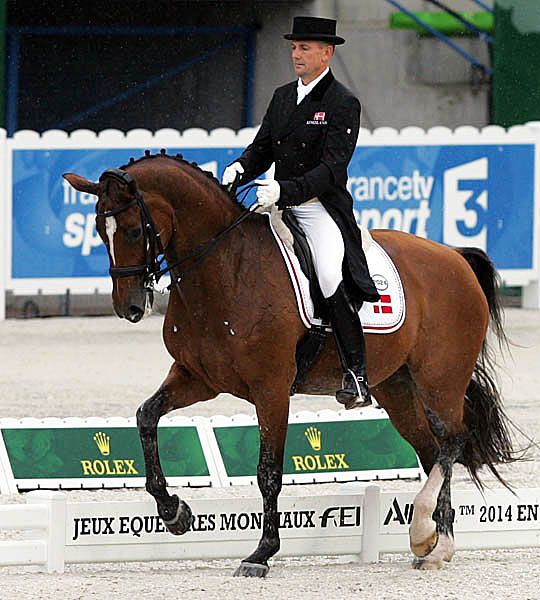 Lars Petersen on Mariett at the World Equestrian Games in Normandy, France. © 2014 Ken Braddick/dressage-news.com