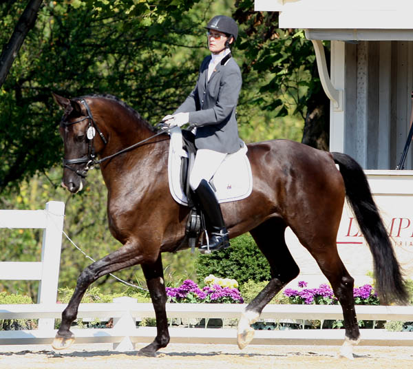 Angela Jackson and Allure. © Ken Braddick/dressage-news.com