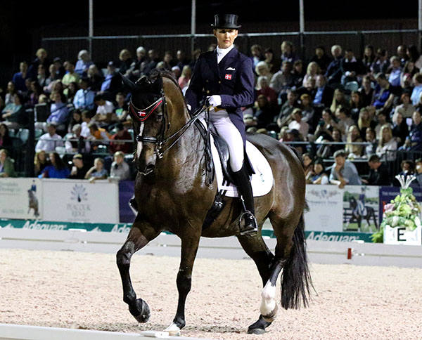 Mikala Gundersen on My Lady placed third in the World Cup Freestyle that helped move the rider to the second spot on the Adequan Global Dressage Festival money winning list. © 2015 Ken Braddick/dressage-news.com