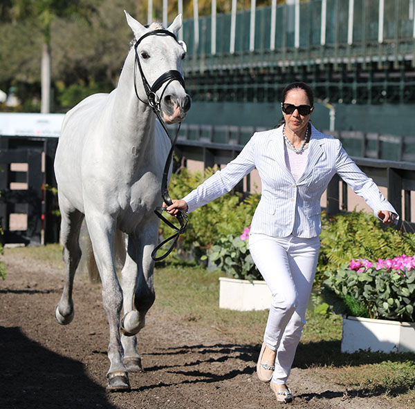 Sonia Zugel of Ireland and her Afago Da Raposa were in matching outfits at the Adequan Global Dressage Festival veterinary check. © 2015 Ken Braddick/dressage-news.com