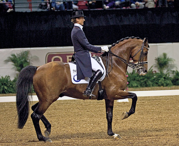 Lingh being ridden by Edward Gal to reserve champion at the World Cup Final in Las Vegas in 2005. ©Ken Braddick/dressage-news.com