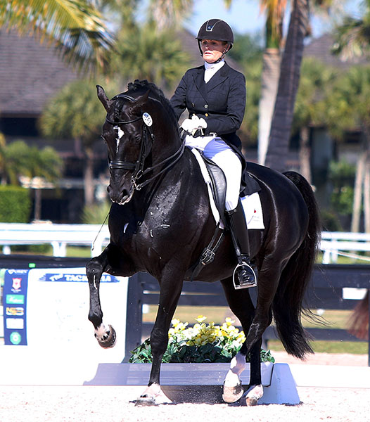 Ashley Holzer riding Dressed in Black at the Adequan Global Dressage Festival national competition. © 2015 Ken Braddick/dressage-news.com