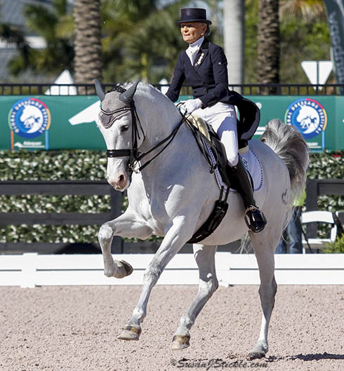 On her 71st birthday, Janne Rumbough riding Junior in the Adequan Global Dressage Festival CDI3* Grand Prix. Janne also owns My Lady that was ridden to victory by Mikala Gundersen in the CDI4* Grand Prix. © 2015 SusanJStickle.com