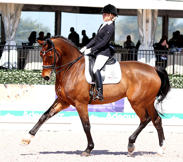 German Junior team gold medalist Felicitas Hendricks on Faible AS. © 2015 Ken Braddick/dressage-news.com