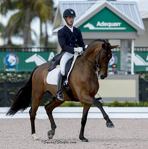 Zilverstar ridden by Chris von Martels showing off his extended trot in the Adequan Global Dressage Festival CDI5* Intermediate Freestyle. © 2015 SusanJStickle.com