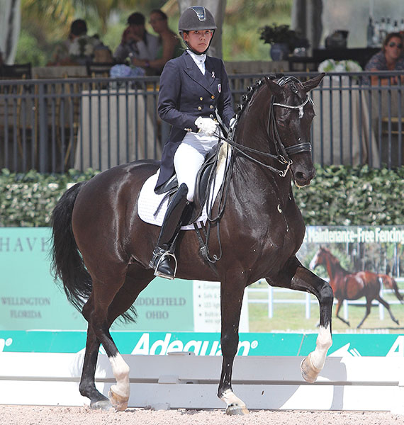 Chase Hickok on Sagacious HF. © 2015 Ken Braddick/dressage-news.com