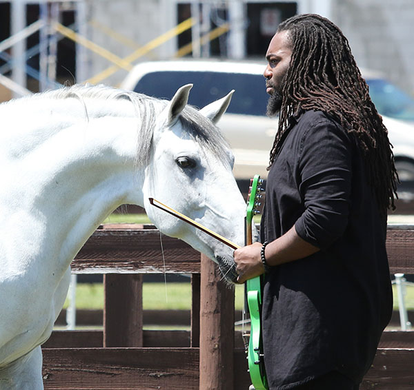 Used to performing before thousands of fans around the world, D Sharp had no qualms meeting this Lusitano. © 2015 Braddick/dressage-news.com