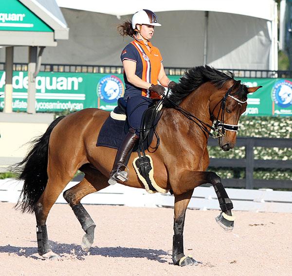 Dana Van Lierop on Equestricons Walkuere. © 2015 Ken Braddick/dressage-news.com