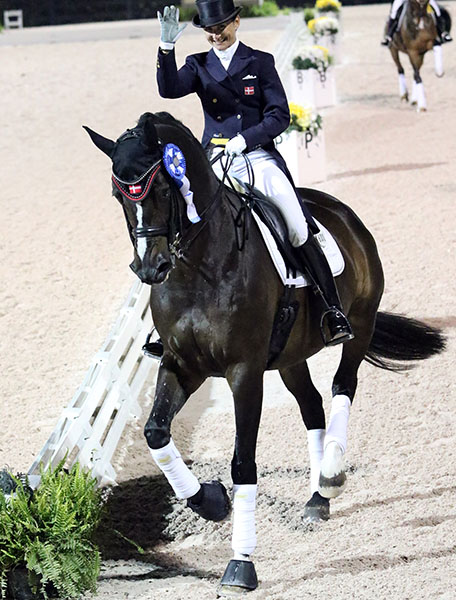 Mikala Gundersen celebrating victory on My Lady at the Global Dressage Festival where the pair were the top money earners in 2015. ©2015 Ken Braddick/dressage-news.com
