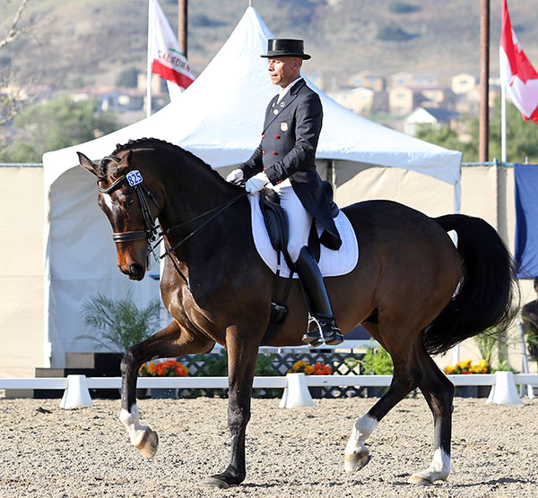Steffen Peters riding Legolas in California. © 2015 Ken Braddick/dressage-news.com
