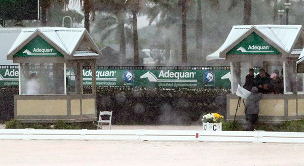 Judges trapped in their boxes by an out-of-season tropical thunderstorm that caused postponement of Adequan Global Dressage Festival Friday night Freestyles to Saturday. © 2015 Ken Braddick/dressage-news.com