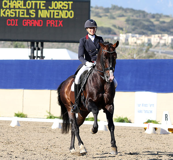 Charlotte Jorst riding Kastel's Nintendo  in California. © 2015 Ken Braddick/dressage-news.com