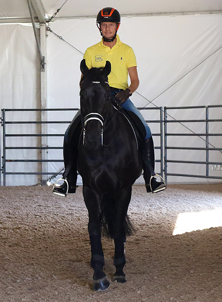 Edward Gal exercising Glock's Undercover at the Thomas & Mack Center for the World Cup Final. © 2015 Ken Braddick/dressage-news.com