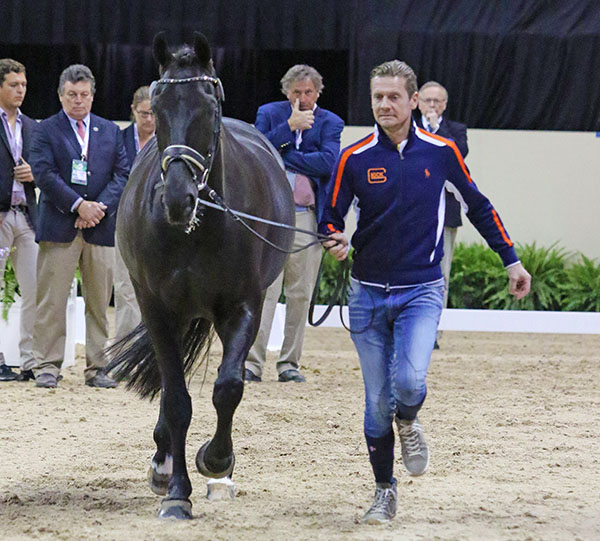 Edward Gal and Glock's Undercover at the World Cup Final veterinary check. © 2015 Ken Braddick/dressage-news.com