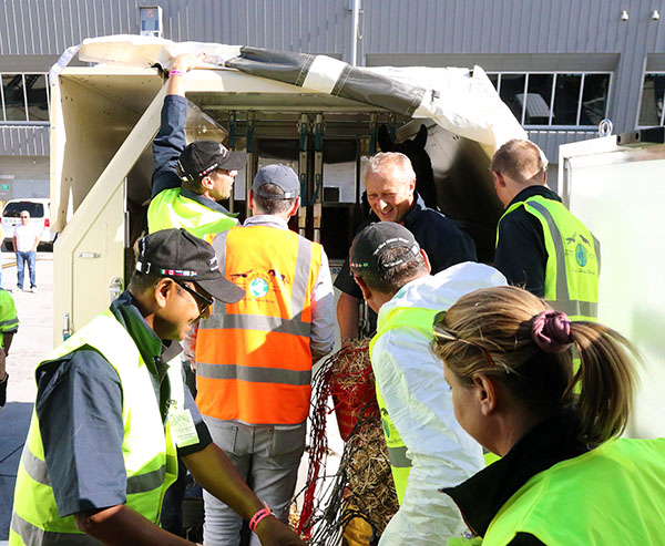 Ground crew led by Tim Dutta of Dutta Corp. (front left) working to get horses from specially designed freight containers on to trucks to go to the Thomas & Mack Center for the World Cup Finals. © 2015 Ken Braddick/dressage-news.com