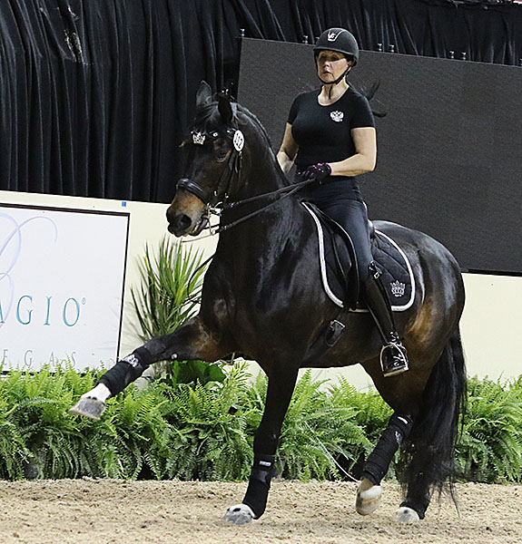Inessa Merkulova of Russia on Mister X. © 2015 Ken Braddick/dressage-news.com