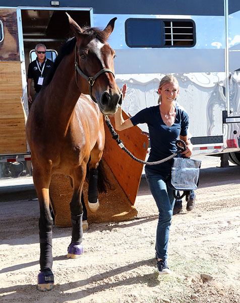 Verdades and Laura Graves happy to arrive at the stables that will be the horse's home for the next week at the Thomas & Mack Center for the World Cp Final. © 2015 Ken Braddick/dressage-news.com