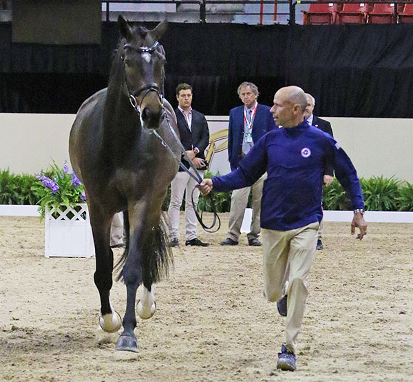 Steffen Peters and Legolas, the U.S. championship pair. The 2009 World Cup champion rider will is competing Legolas in the horse's first World Cup Final. © 2015 Ken Braddick/dressage-news.com