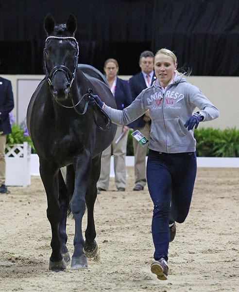 Tehri Stegars and Axis TSF are appearing in their first World Cup Final but have competed for Final as the highest scoring pair on their nation's team at the World Games in 2014 as well as competing in Nations Cups. © 2015 Ken Braddick/dressage-news.com