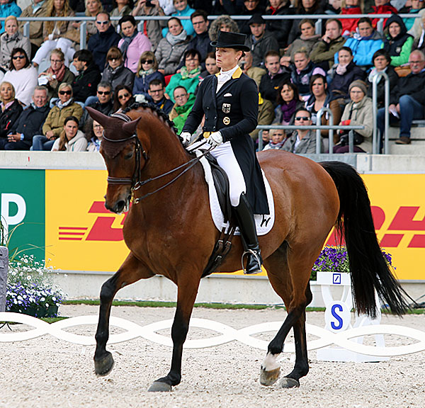Isabell Werth on Don Johnson FRH. © 2015 Ken Braddick/dressage-news.com