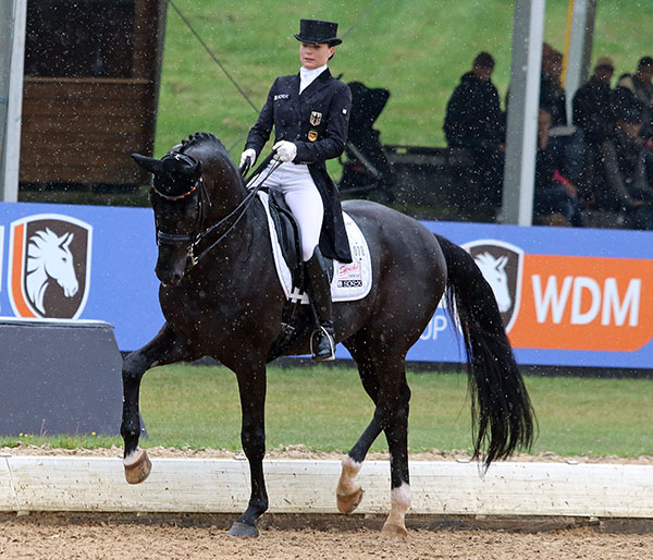 Kristina Sprehe on Desperados FRH. © 2015 Ken Braddick/dressage-news.com