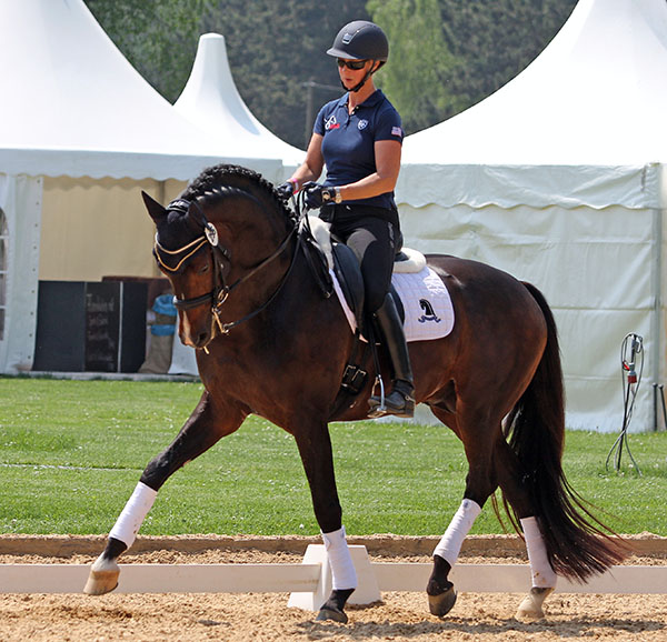 Sabine Schut-Kery working on Sanceo at the Munich dressage complex. © 2015 Ken Braddick/dressage-news.com