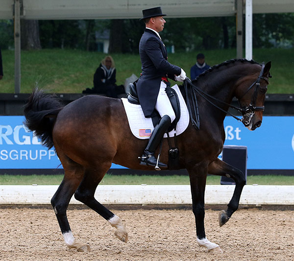 Legolas being competed by Steffen Peters in Europe. © 2015 Ken Braddick/dressage-news.com