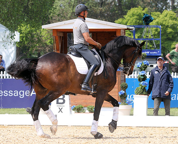 Steffen Peters riding Legolas and wearing spurs for the first time since the World Cup Final in Las Vegas where the par were eliminated when the horse was found to have a small amount of blood on his side possibly caused while spooking during a an outburst of applause after the Freestyle. © 2015 Ken Braddick/dressage-news.com
