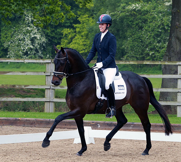 Top Secret (Totilas x Dacaprio) ridden by Charlotte Dujardin