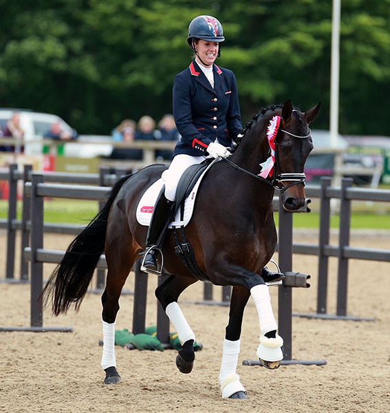 Charlotte dujardin young horses from new partner mount for Charlotte dujardin