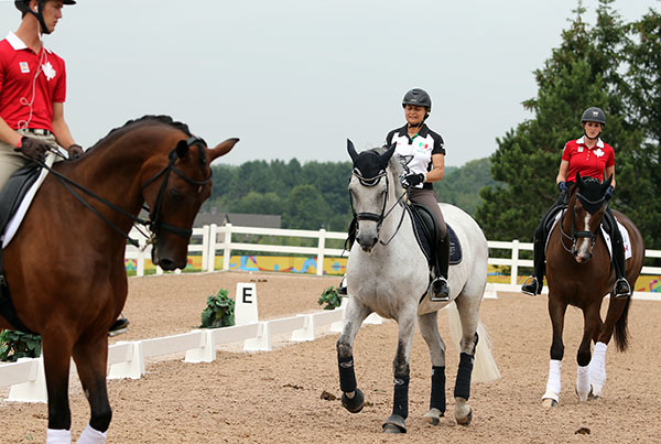 Mexico's Bernadette Pujals, an Olympic and championship veteran on Heslegaards Rolex surrounded by Canadians Chris von Martels on Zilverstar and Brittany Fraser on All In in the schooling arena. © 2015 Kwen Braddick/dressage-news.com