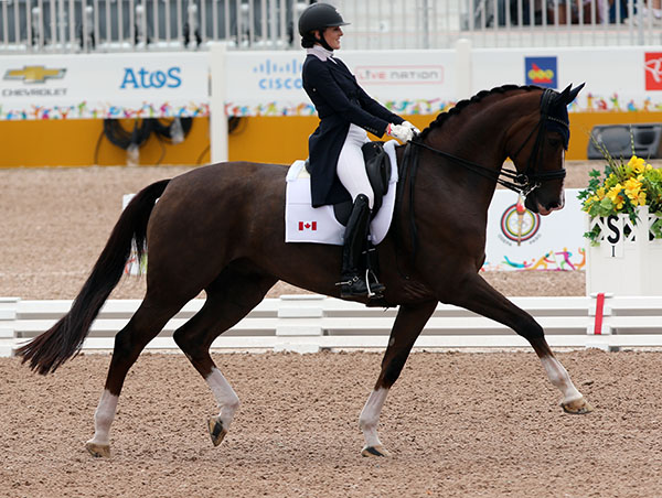 Brittany Fraser and All In raising the bar at the Pan American Games Nations Cup. © 2015 Ken Braddick/dressage-news.com