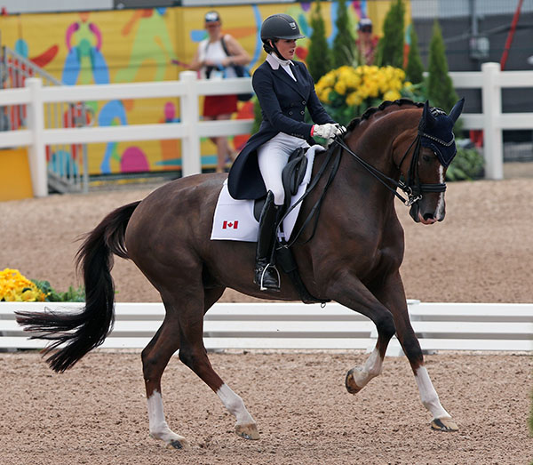 Brittany Fraser and All In. © Ken Braddick/dressage-news.com