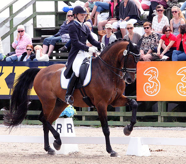 Emilie Nyreröd and Miata in the CDIO5* Grand Prix Special at Falsterbo. © 2015 Pelle Wedenmark for dressage-news.com