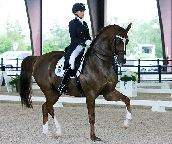 Lisa Wilcox competing Galant at Grand Prix. © 2015 Ken Braddick/dressage-news.com