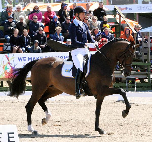 Patrik Kittel on Deja riding for Sweden at the Falsterbo Nations Cup. © 2015 Pelle Wedenmark for dressage-news.com