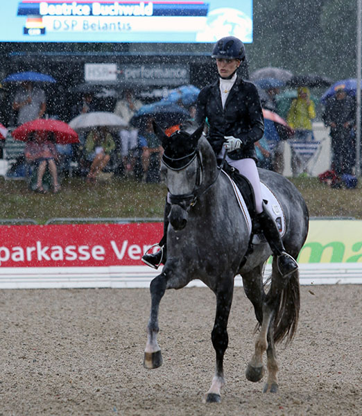 DSP Belantis being ridden by Beatrice Buchwald of Germany through heavy rain to produce the highest trot score of the day at the World Young Horse Championships six-year-old first qualifier. © 2015 Ken Braddick/dressage-news.com