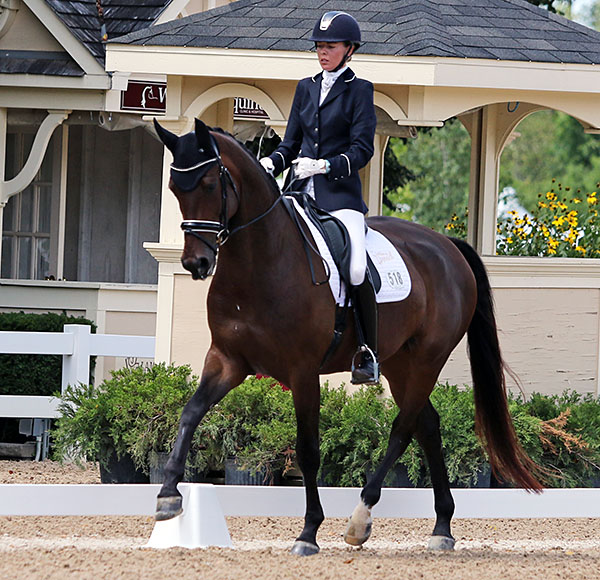 Carly Taylor-Smith and Rosalut NHF performing in the USA Championships five-year-old preliminary test. © 2015 Ken Braddick/dressage-news.com