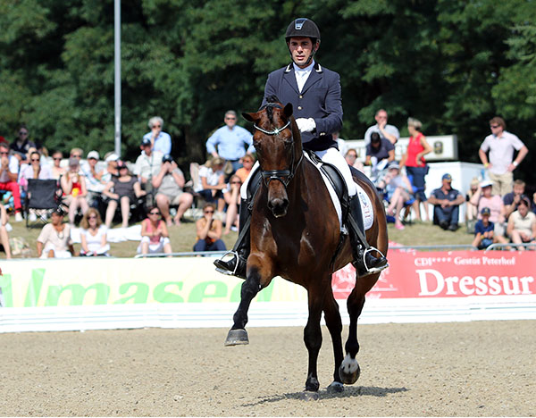 Fontini ridden by Jurado Severo to victory in the World Young Horse Championship five-year-old qualifier for final at Verden, Germany. © 2015 Ken Braddick/dressage-news.com
