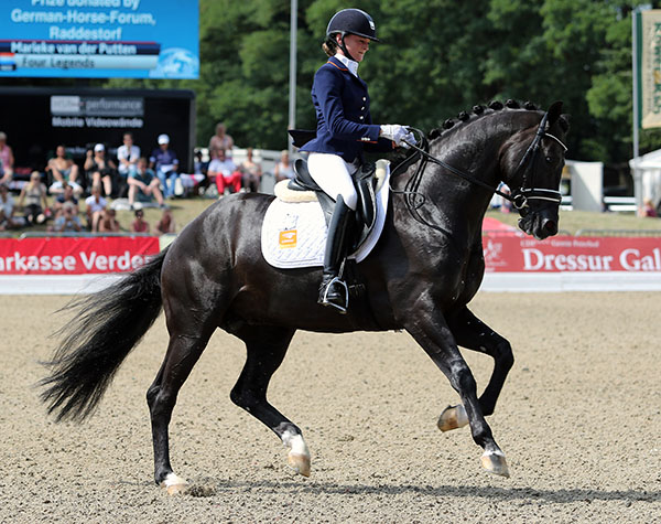 Four Legends with Marieke van der Putten aboard that placed in the World Young Horse Championships qualifier for the 5-year-old final. © 2015 Ken Braddick/dressage-news.com