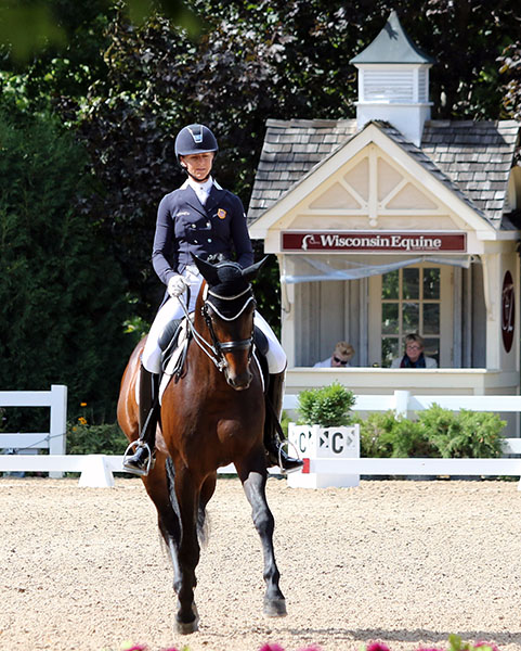 Heather Blitz and Ripline in the USA Championships Developing Prix St. Georges. © 2015 Ken Braddick/dressage-news.com
