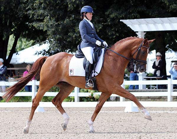 Katie Riley on Don Cesar in the USA Championships 5-year-old preliminary competition. © 2015 Ken Braddick/dressage-news.com