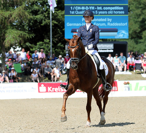 Kirsten Brower on Five Star, the Dutch combination that placed second in the World Young Horse Championships five-year-old qualifier for the final. © 2016 Ken Braddick/dressage-news.com
